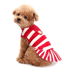 Pet Apparel & Accessories