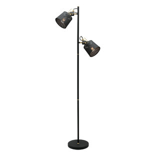 Arizona 2 Light Floor Lamp