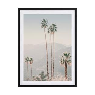 Palm Springs II Framed Printed Wall Art