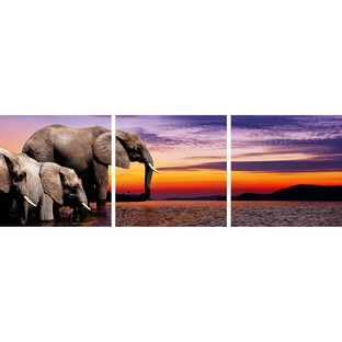 African Savannah Elephants Triptych (Set of 3)