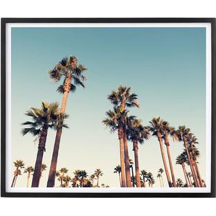 California Nights Framed Print