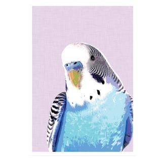 Blue Budgie Print