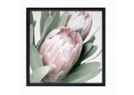 Urban Road Protea II Framed Print