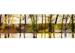 Marmont HIll Lake Trees Canvas Wall Art