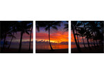 Art Illusions Palm Cove Sunset Triptych (Set of 3)
