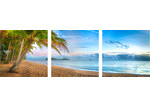 Art Illusions Palm Cove Dawn Triptych (Set of 3)