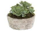 Florabelle 16cm Green Faux Succulent with Ceramic Pot