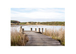 Amelia Anderson Coastal Wetlands Printed Wall Art