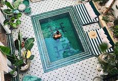 Instagram inspo for the colour peacock