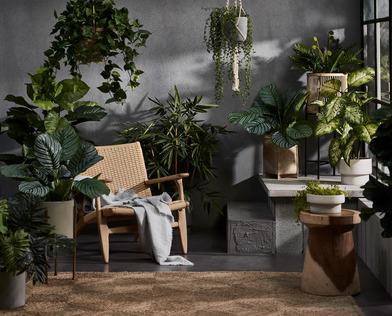 Lush contemporary sunroom