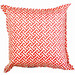 Bungalow Living White & Pink Peachtini Outdoor Cushion