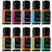 Alcyon 10 Piece Perfect Pure 10ml Essential Oil Set