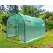 Dwell Outdoor 300 x 200cm Dome Gramen PE Greenhouse Cover