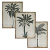 Coast Palms Framed Printed Wall Art Triptych