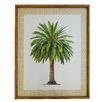 Canary Palm Framed Printed Wall Art