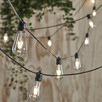 LED Vintage Style Outdoor Festoon Lights