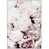 A Bunch of Lovely Peonies Framed Canvas Wall Art