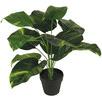 45cm Faux Dieffenbachia Plant