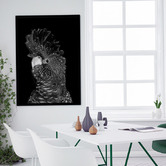 A La Mode Studio The Masked Ball II Black Cockatoo Canvas Wall Art
