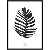 Innova Australia Jungle Leaf Framed Printed Wall Art