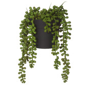 The Home Collective 23cm Potted Faux String Of Pearls Plant