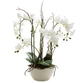 Florabelle 60cm White Real Touch Orchid with Pot