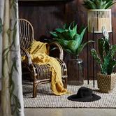 Florabelle Seville Rustic Rattan Armchair