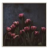 Photographers Lane 13 Tulips Printed Wall Art
