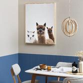 Temple & Webster Alpaca Friends Framed Canvas Wall Art