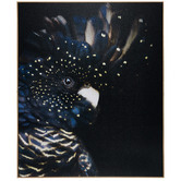 Temple & Webster Curious Cockatoo Framed Canvas Wall Art