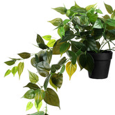 Temple & Webster 80cm Potted Faux Hanging Ivy Plant
