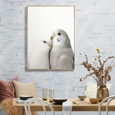 Temple & Webster Budgie Love Framed Canvas Wall Art