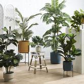 Maddison Lane 47cm Potted Faux Botanica Monstera Plant