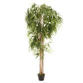 Maddison Lane 180cm Potted Faux Bamboo Tree