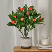 Maddison Lane 50cm Potted Faux Orange Plant