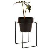 Bendo Shrub Metal Plant Stand with Pot