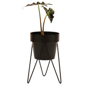 Bendo Sprout Metal Plant Stand with Pot