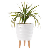 Ladelle Modern Ripple Footed Planter Pot