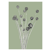Frianki Sage The Billy Buttons Unframed Paper Print