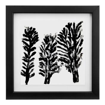Silky Oak Framed Print Temple Amp Webster