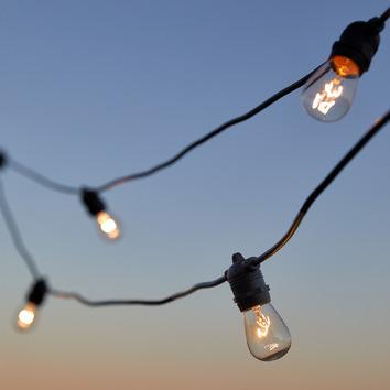 Temple Webster Outdoor Festoon Lights Reviews