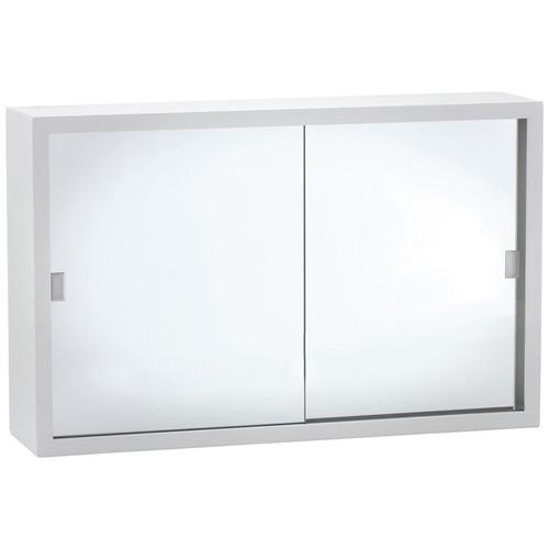 38cm x 60cm Sian Bathroom Cabinet with Acrylic Mirror