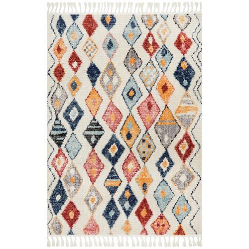Plush Moroccan Rug