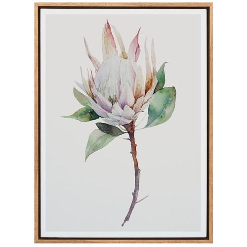 A La Mode Studio Cool Botanical Canvas Wall Art Amp Reviews