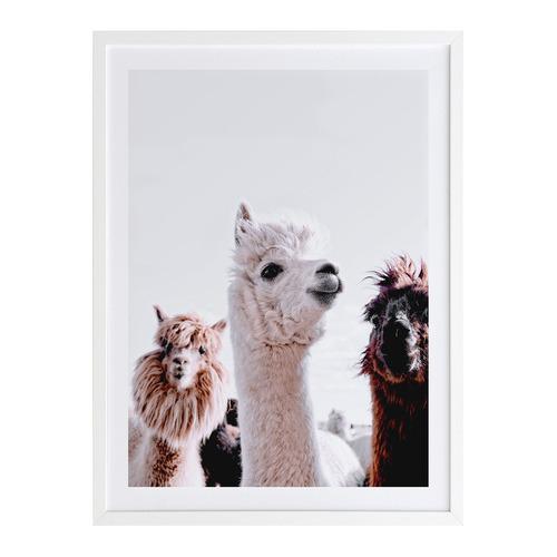 A La Mode Studio Llamas on Parade Printed Wall Art
