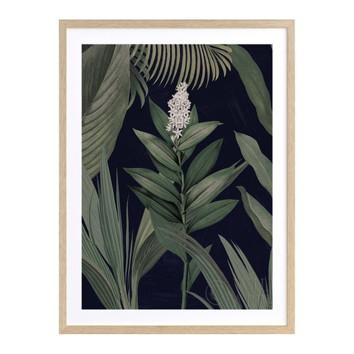 A La Mode Studio Dark Flora I Printed Wall Art