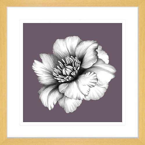Innovate Interiors In Bloom III Framed Print