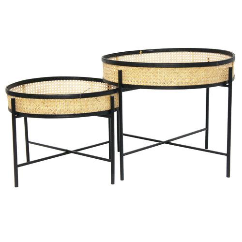 Stoneleigh & Roberson 2 Piece Meno Rattan Tray Top Coffee Table Set