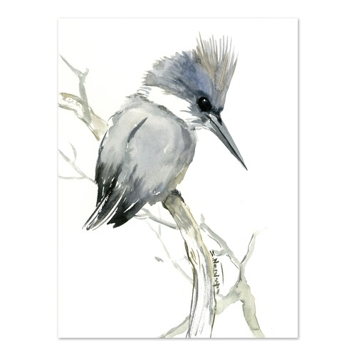 Belted Kingfisher 2 Printed Wall Art