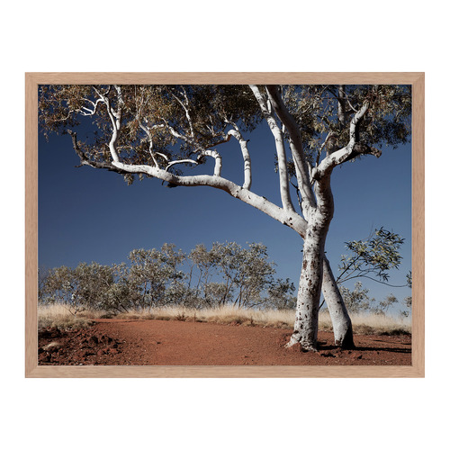 Urban Road Red Earth Framed Printed Wall Art